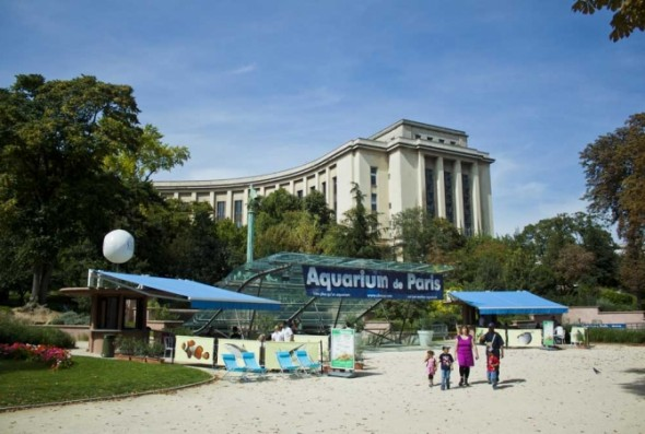 Lamuse adresses for Aquarium de paris jardin du trocadero