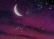 Nuit des étoiles, Cité des Sciences