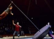 Le vol du rempart, Espace Cirque Antony