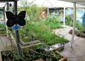 Jardin des papillons, Parc Floral